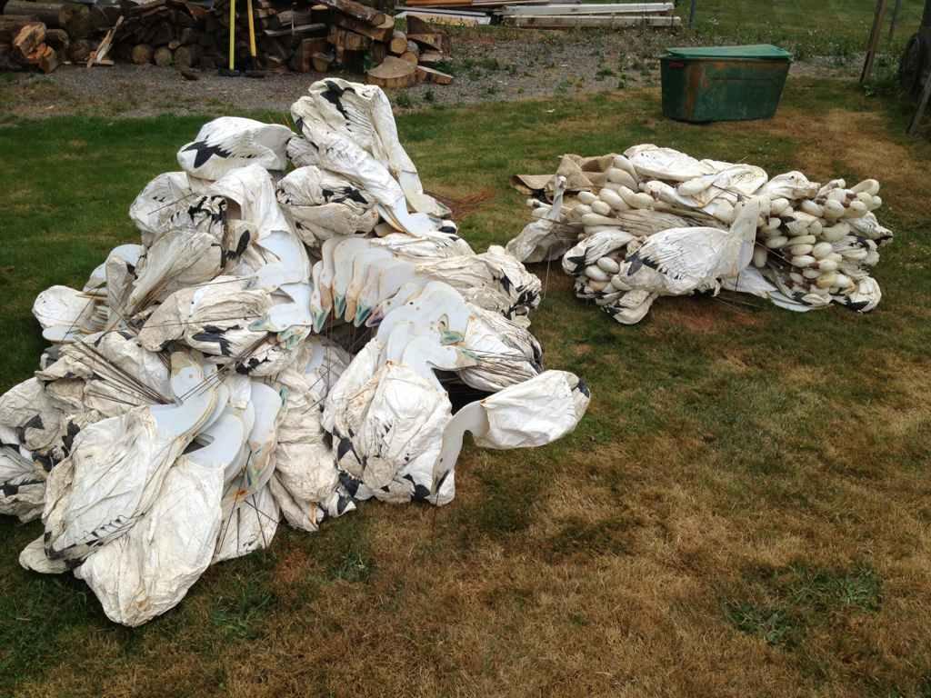 Snow goose decoys - Sold | Bloodydecks