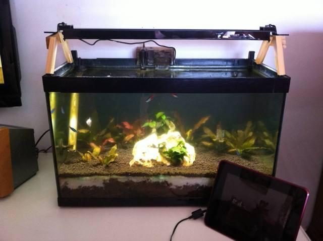 Plafoniera Led Acquario Acqua Dolce : Plafoniera led acquario acqua dolce illuminazione a