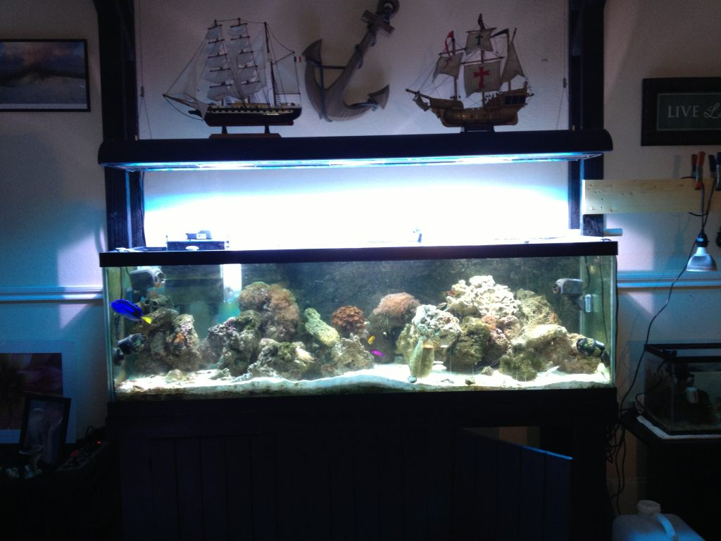 How To Build A 6ft Fish Tank Stand