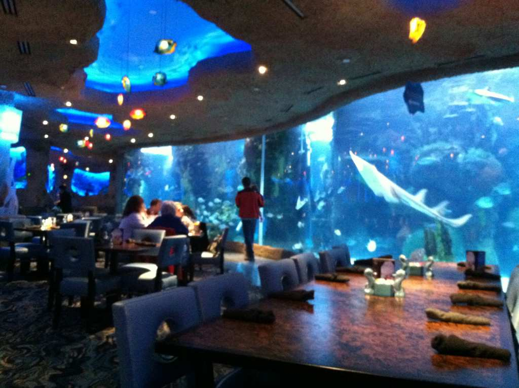 Stopped By Opry Mills And They Have A Restaurant With At 200 000g Aquarium In It