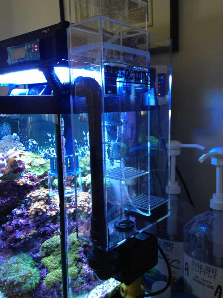 4apahezu - Reef Octopus BH-1000.