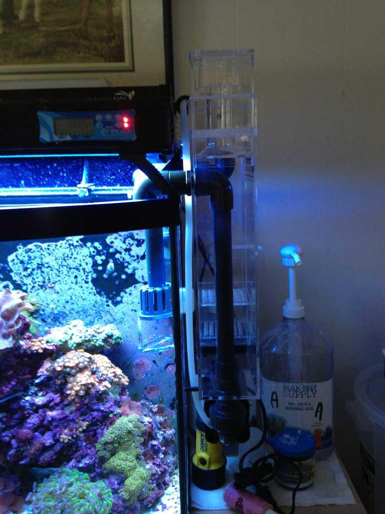 segy9yne - Reef Octopus BH-1000.
