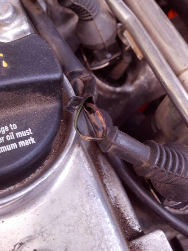 Damaged injector harness (resolved)
