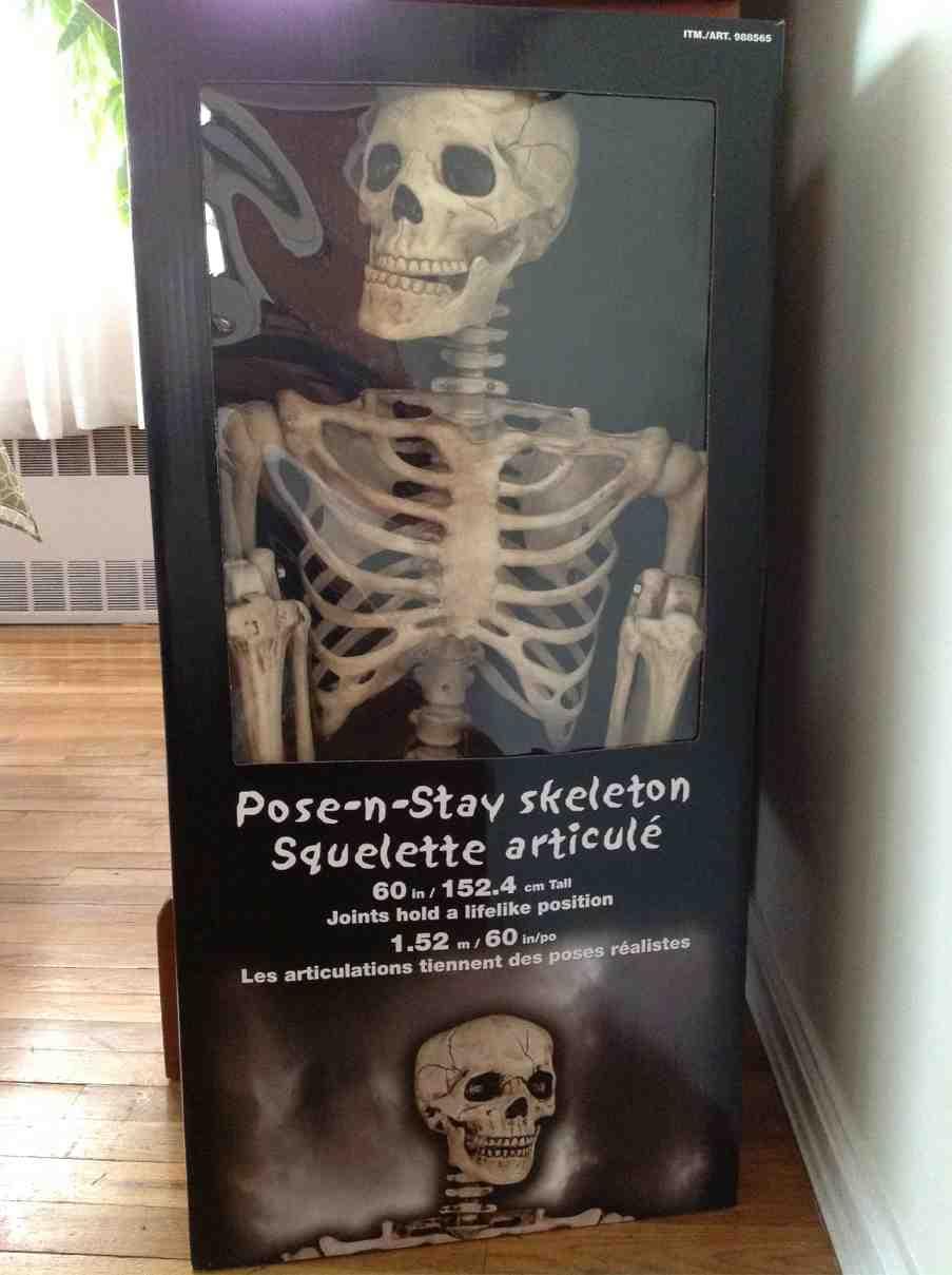 Walgreens posable skeleton