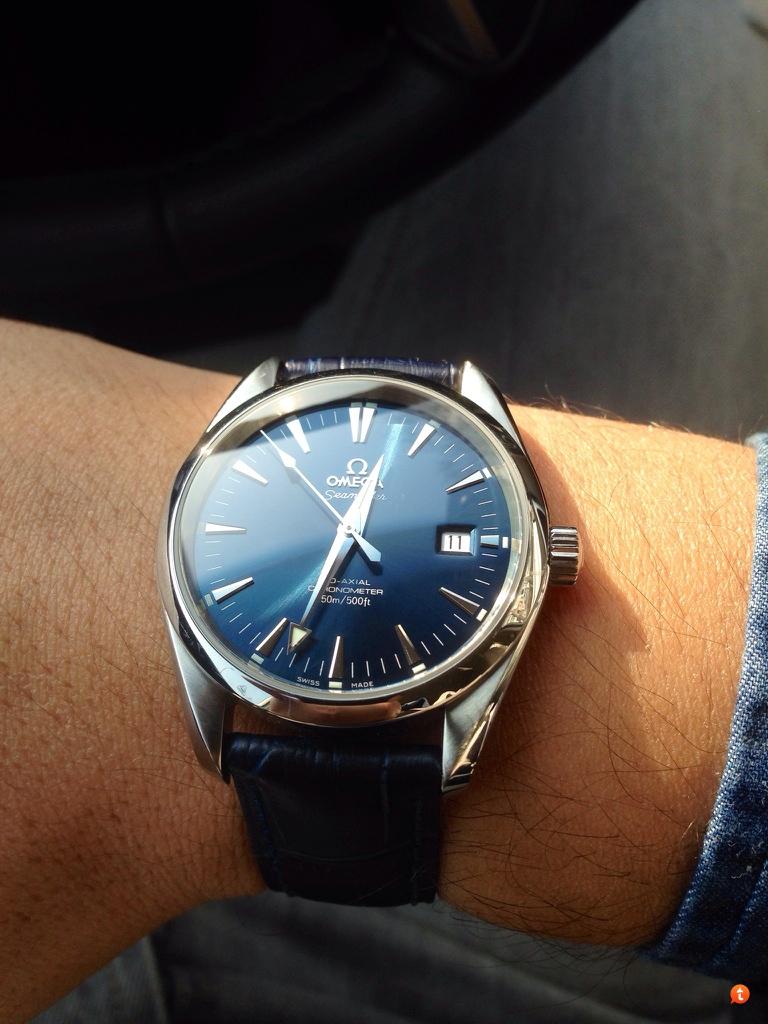 Omega Aqua Terra Blue Dial