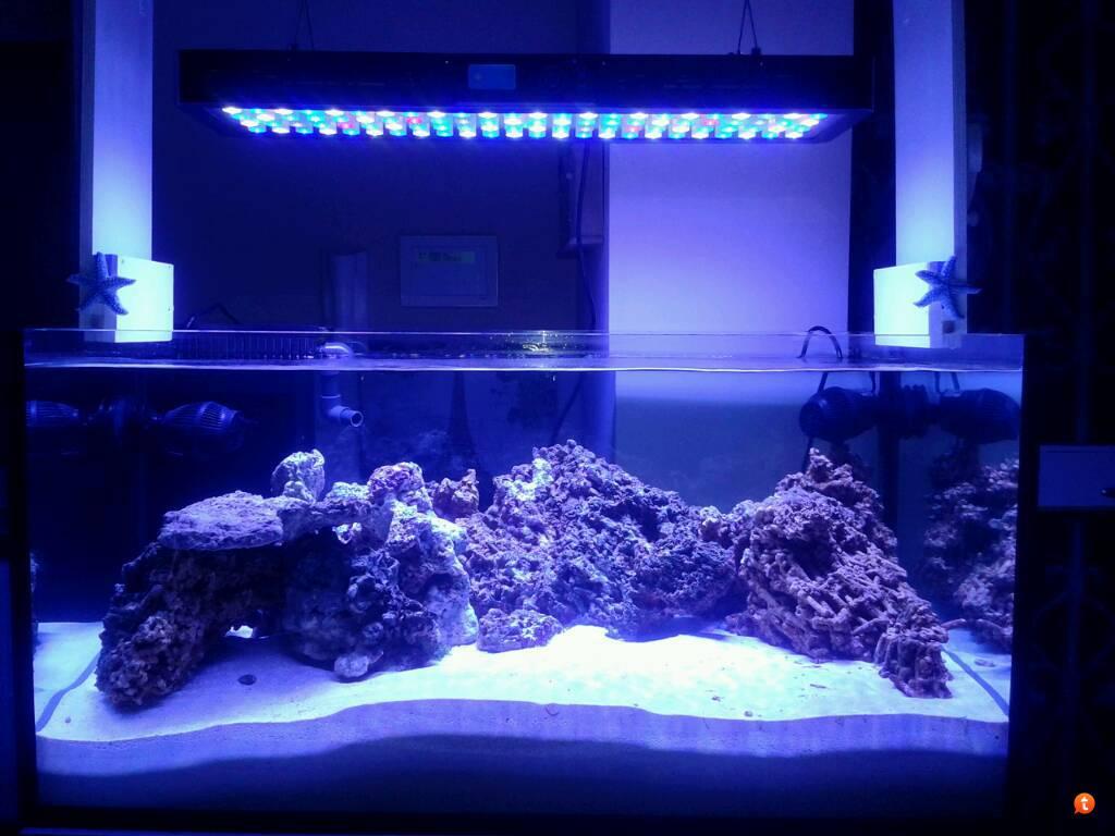 Plafoniera Led Acquario Marino 120 Cm : Maxspect rsx plafoniera a led w per marino da cm