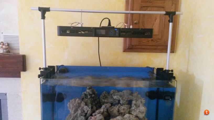 Plafoniera Fai Da Te Acquario : Sospensione plafoniera acquario powrgard
