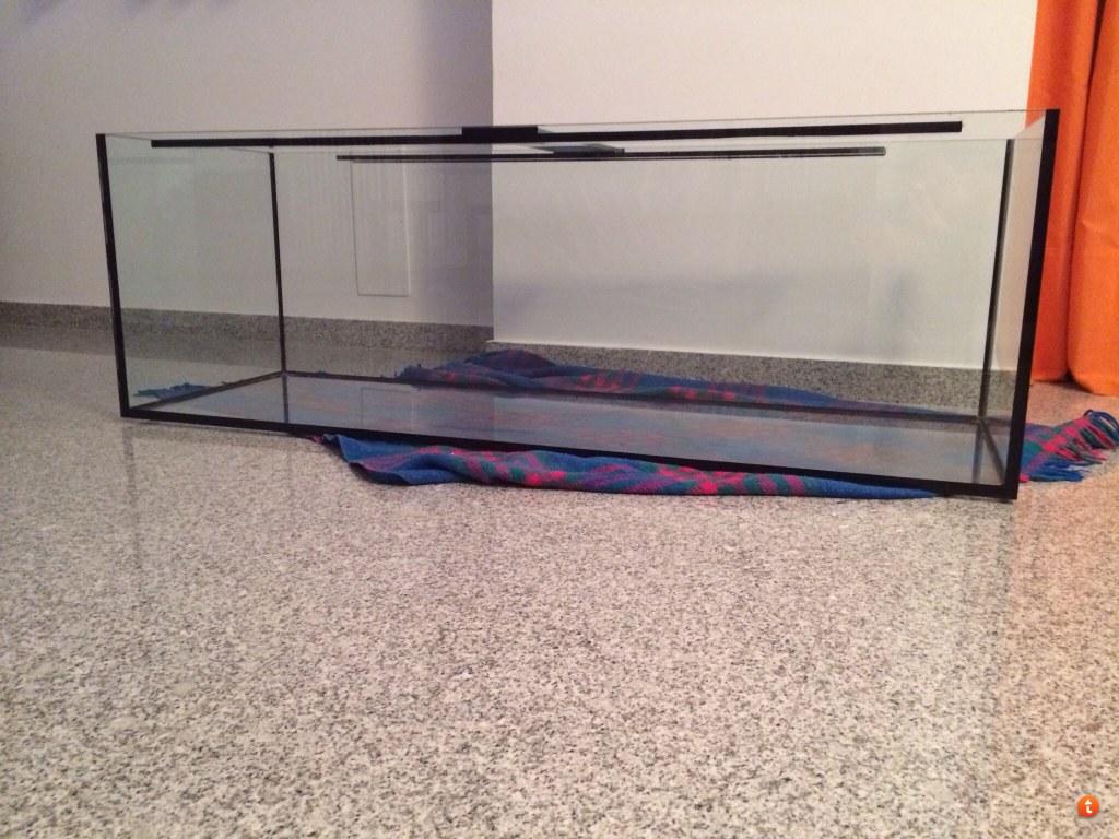 mobili per acquario marino: acquari aquamar aquaristica. roleadro ... - Mobili Per Acquario Marino