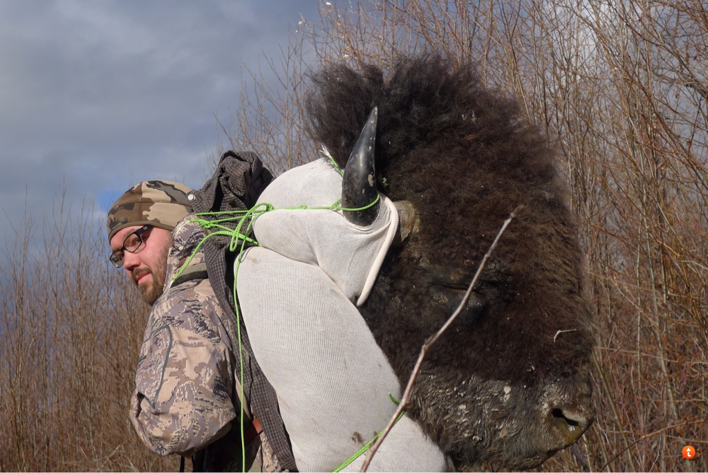 Backpack add on for hauling out cape/head/rack