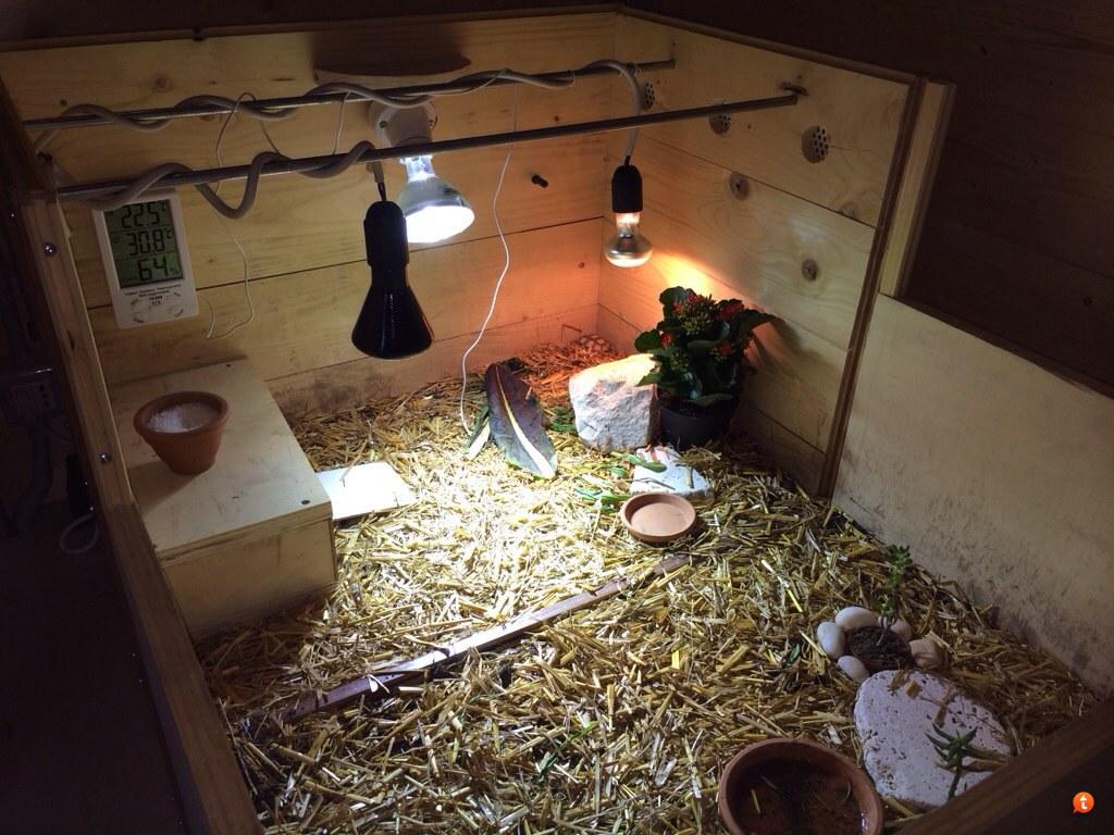 Lampada uv per tartarughe di terra powrgard