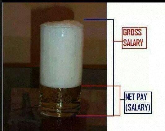 adu7etyv - Gross Salary vs Net Salary - Workplace & Productivity