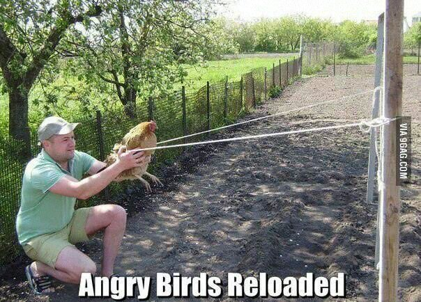 agu4a4a4 - Angry Birds Reloaded - Anonymous Diary Blog