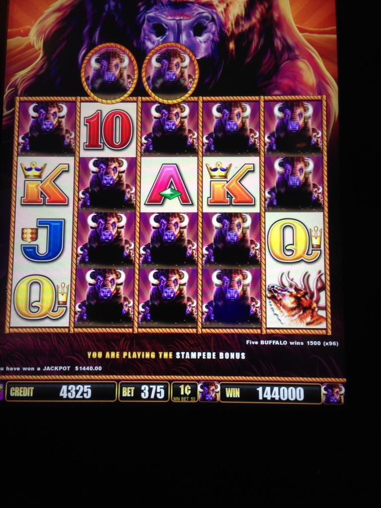 Willard whyte casino