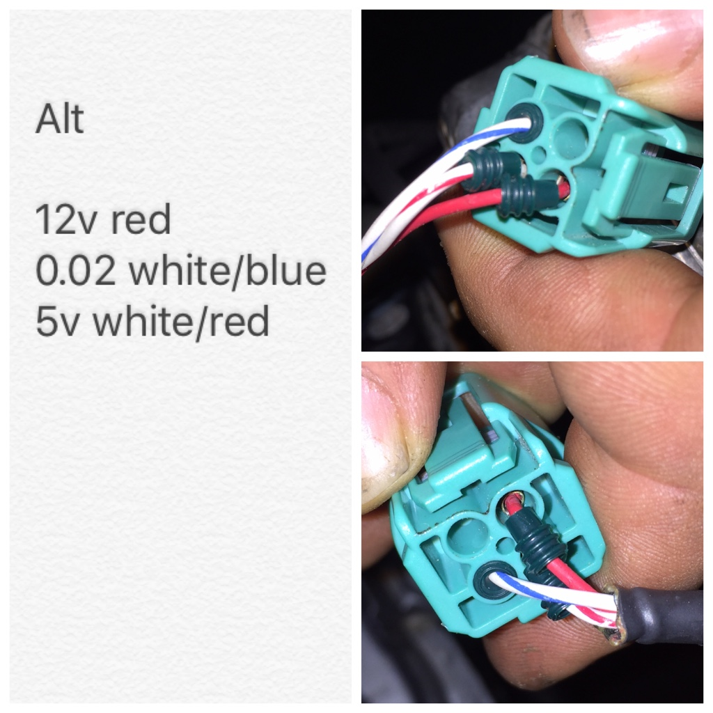 Alternator Wiring Pinout The K Series Source Honda Thread Correct Acura K20a K24a Engine Forum