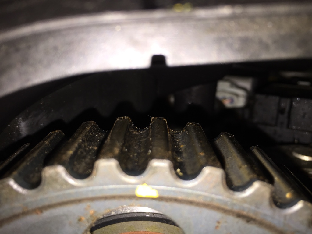 Toothed Timing Belt