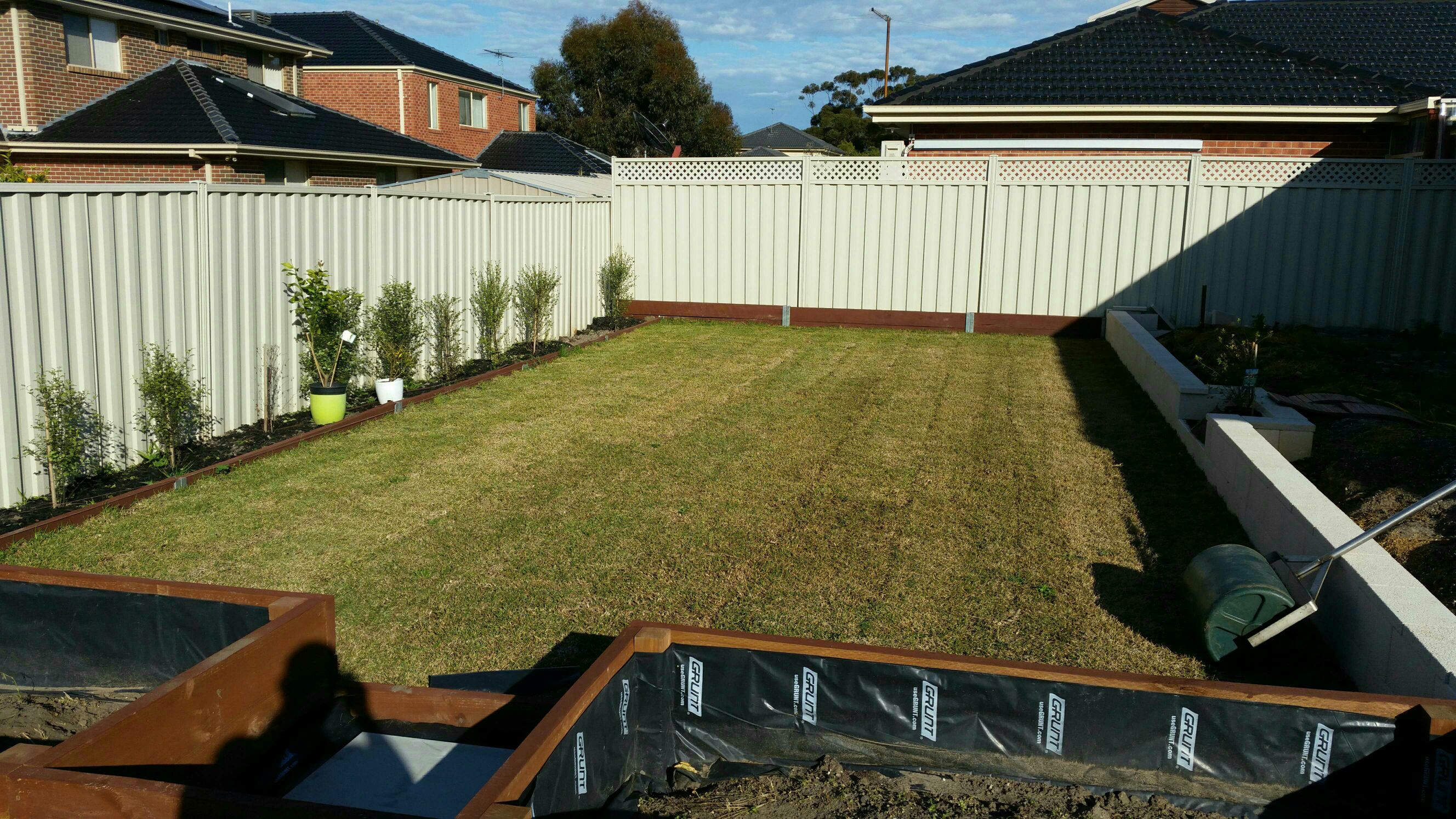 View topic - New Sapphire Buffalo lawn. • Home Renovation & Building ...