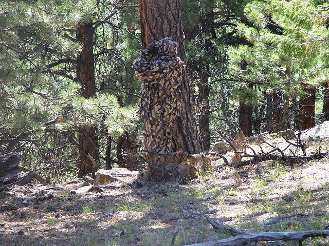 5a6c7f26172b9 Here's a couple pictures to compare, in my opinion I think it's the best  camo out there.