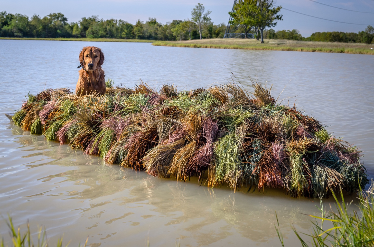 Duck Hunting Chat O Layout Boat Or Homemade Waterfowl