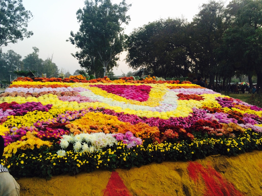 96151c3c07c0ce3b55fc56877cf3e890 - Rose n Jasmine Garden Islamabad