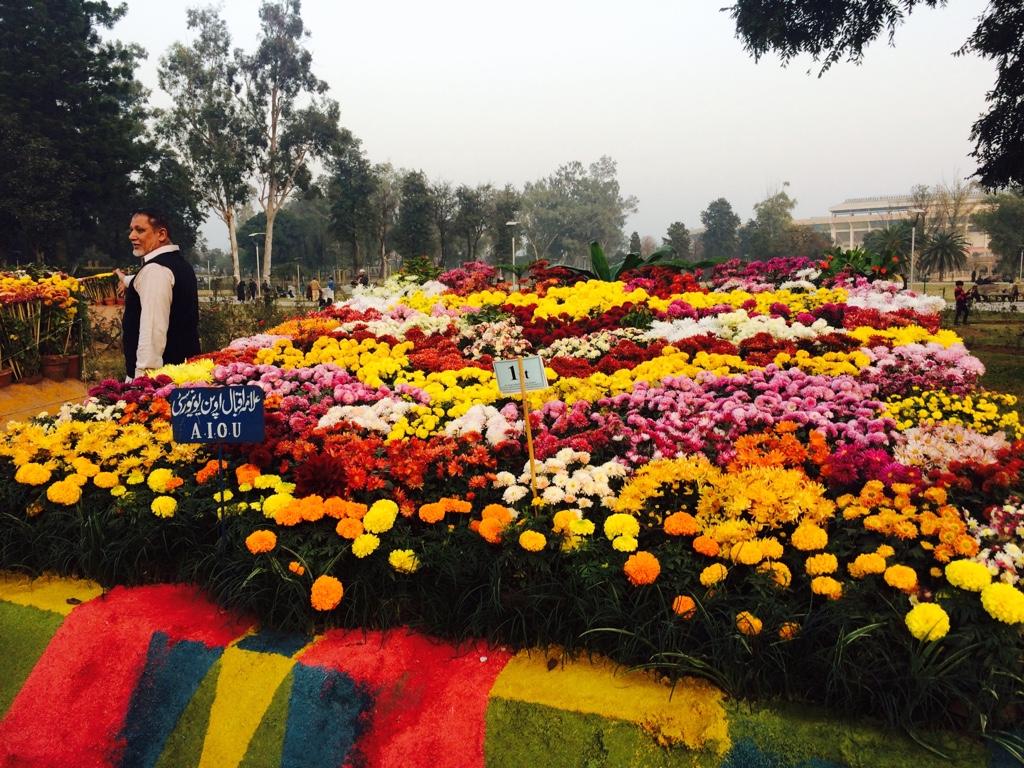 f470ef8871bf59a46d0a4393632ad078 - Rose n Jasmine Garden Islamabad