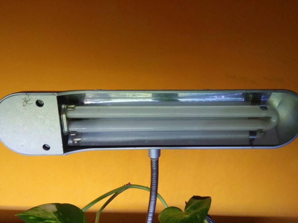 Plafoniera Neon Fai Da Te : Adattare lampada neon per cfl forum acquariofilia facile