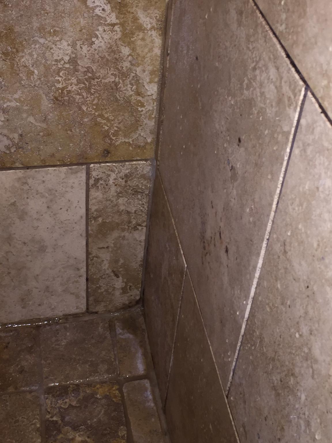 Of posts ceramic tile advice forums john bridge ceramic tile - 7c3064355d832a6f43d789f2a22be9b9 Jpg