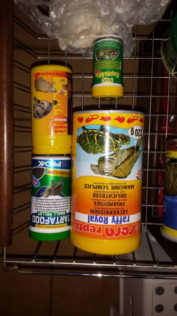 Acqua verde for Vitamina a per tartarughe