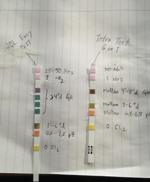 jbl easy test vs tetra test 6 in 1 plantswap. Black Bedroom Furniture Sets. Home Design Ideas