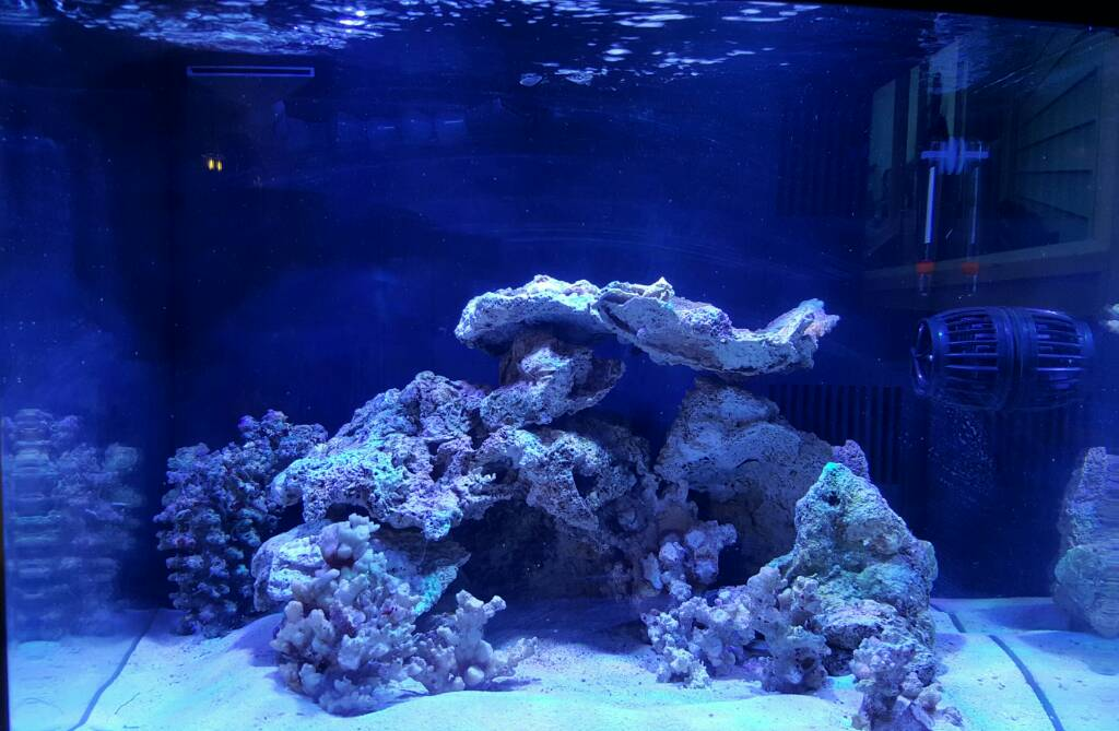 Show me your awesome nano Aquascape! - Page 14 - Reef ...