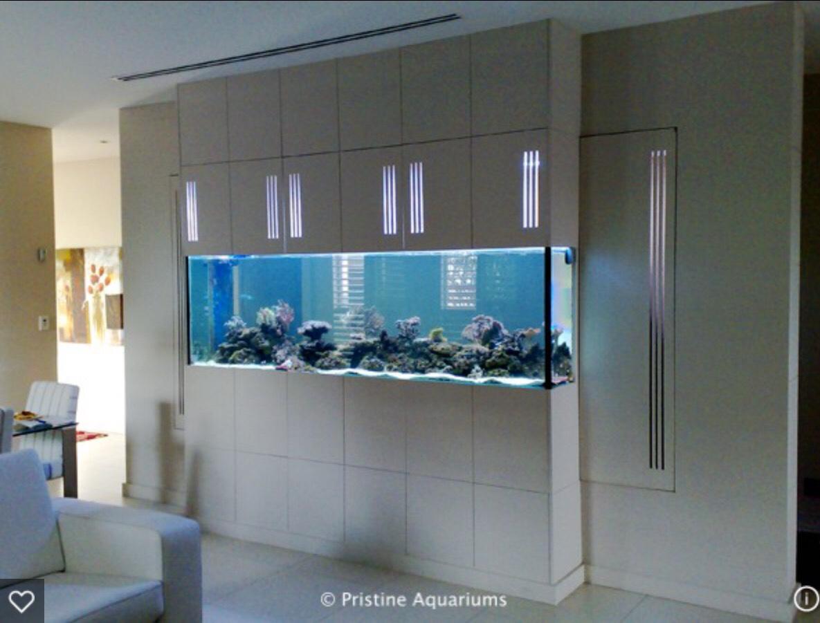Фото аквариума в стене дизайны