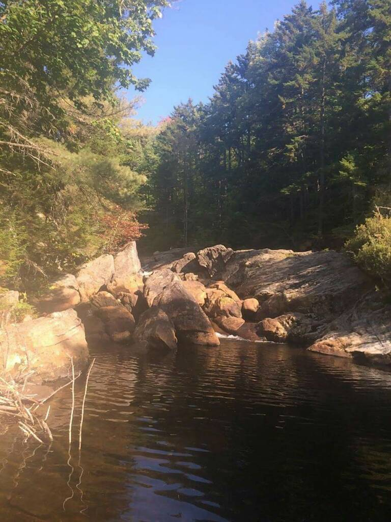 Adirondack hatches the north american fly fishing forum for Adirondack fly fishing