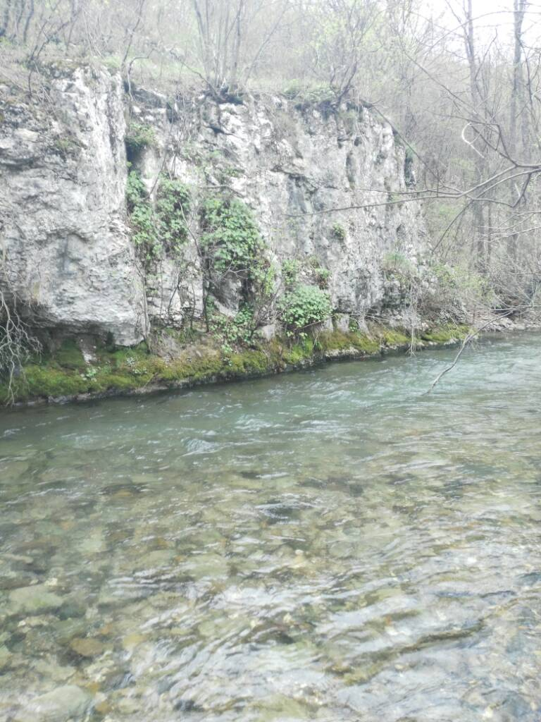 Tamo neka reka na istoku... 516cba68b49bd996e8467f6bf436f98e