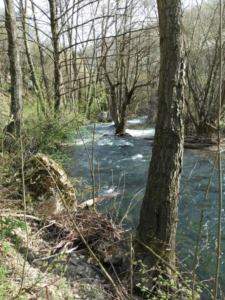 Tamo neka reka na istoku... D10057eb94401594a604e742cfa51a8d