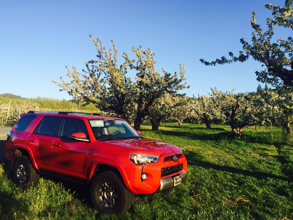 Toyota Charlottesville Va 4Runners in scenic places - Page 7 - Toyota 4Runner Forum - Largest ...