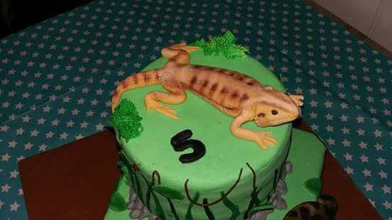 gezocht taart amsterdam