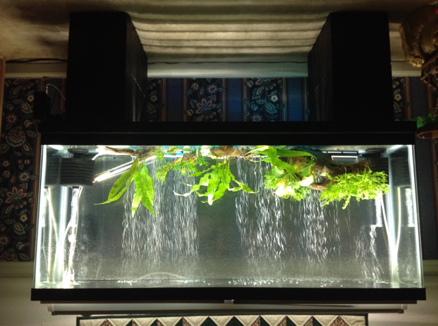 interesting low cost 48 led light the planted tank forum. Black Bedroom Furniture Sets. Home Design Ideas