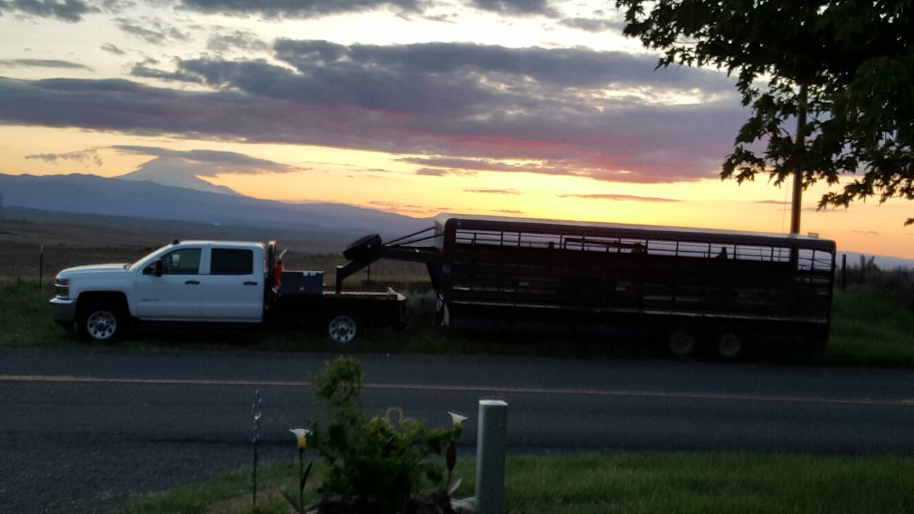 Horse Trailers Page 3 Chevy And Gmc Duramax Diesel Forum