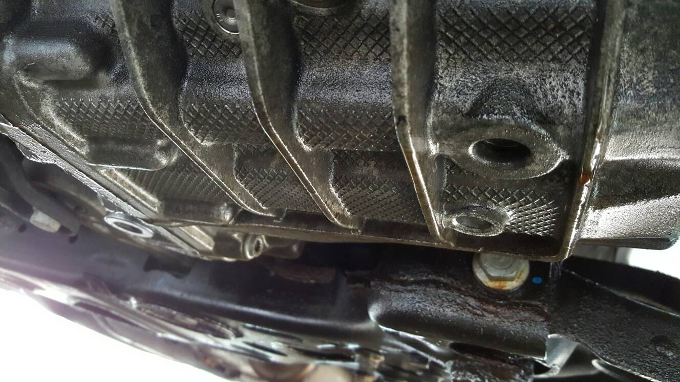 VWVortex com - Leaking DSG fluid