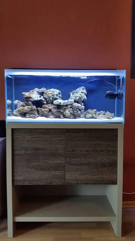 Fluval Edge Beleuchtung Umbau   M90 Im Wohnzimmer Fluval Reef M90 Premium Dein Meerwasser
