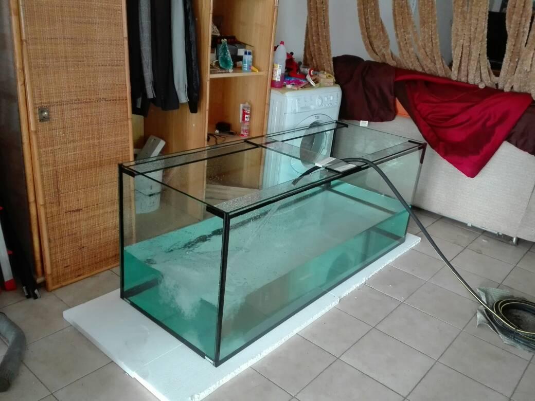 Costruire acquario 160x60x60 in vetro float page 6 for Costruire tartarughiera in vetro