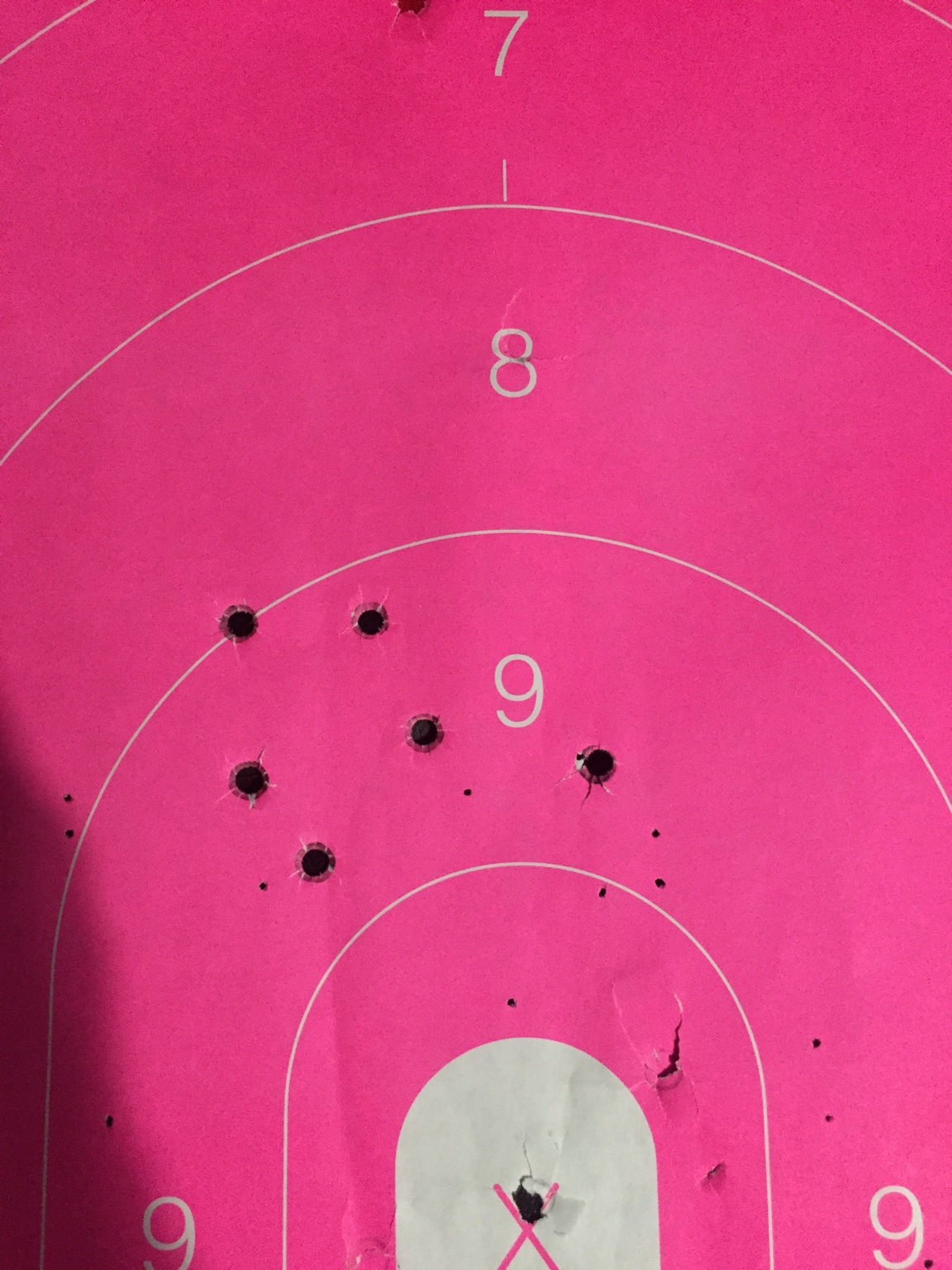 357 Mag loads with H110 and plated bullets    [Archive