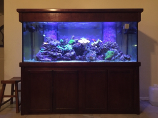 Sold 210 Gallon Dual Overflow Aqueon Tank Stand Canopy