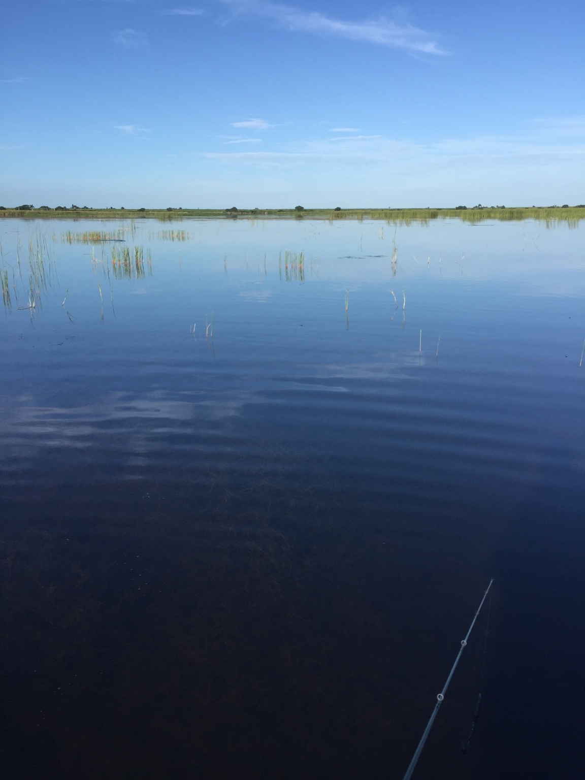 Lake okeechobee slims fish camp and us 27 7 16 16 for Lake okeechobee fish camps
