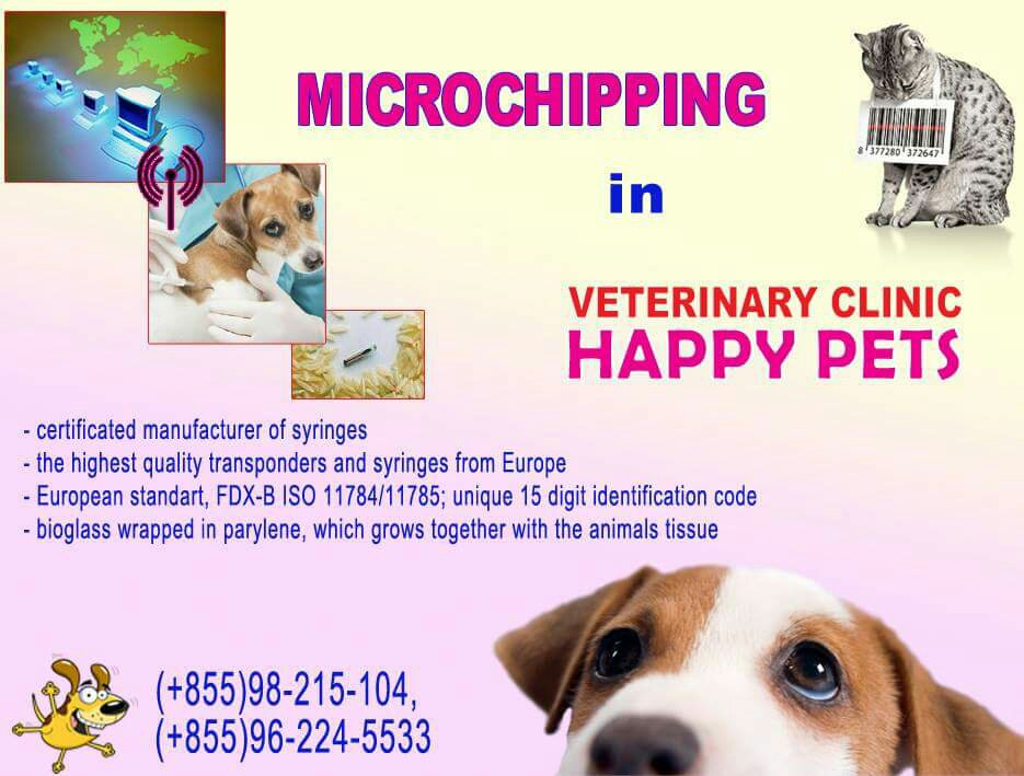 Microchip Your Pet In Sihanoukville  Cambodia Expats. Best Mortgage Interest Rate The Event Center. Continuing Education Web Design. Personal Financial Consulting. Kaspersky Phone Support Medical Billing Class. Time Warner Cable Marysville Ohio. Medcom Answering Service Post Card Direct Mail. Brenau University Campus Web. Wisp Wireless Internet Service Provider
