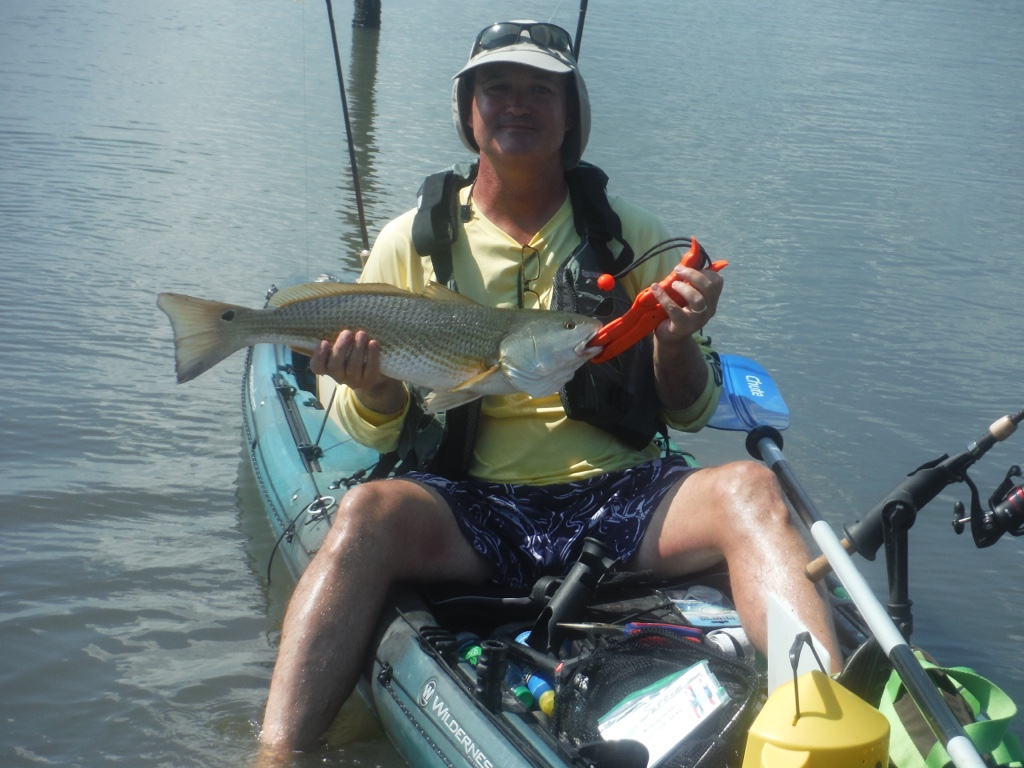 Sounds redfish on topsail island for Topsail island fishing
