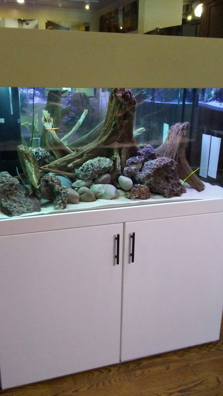 90 Gallon Tank Sale