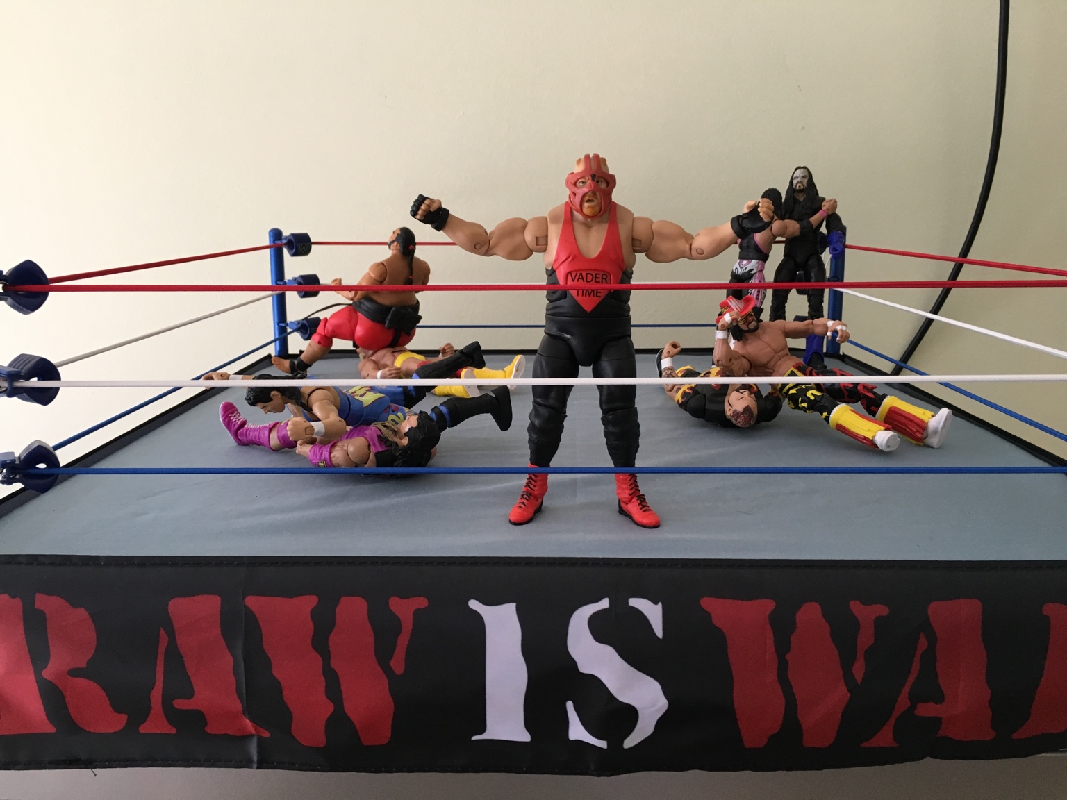 Nwo Ring Skirt Apron Raw Is War Ring Skirt Are Cool