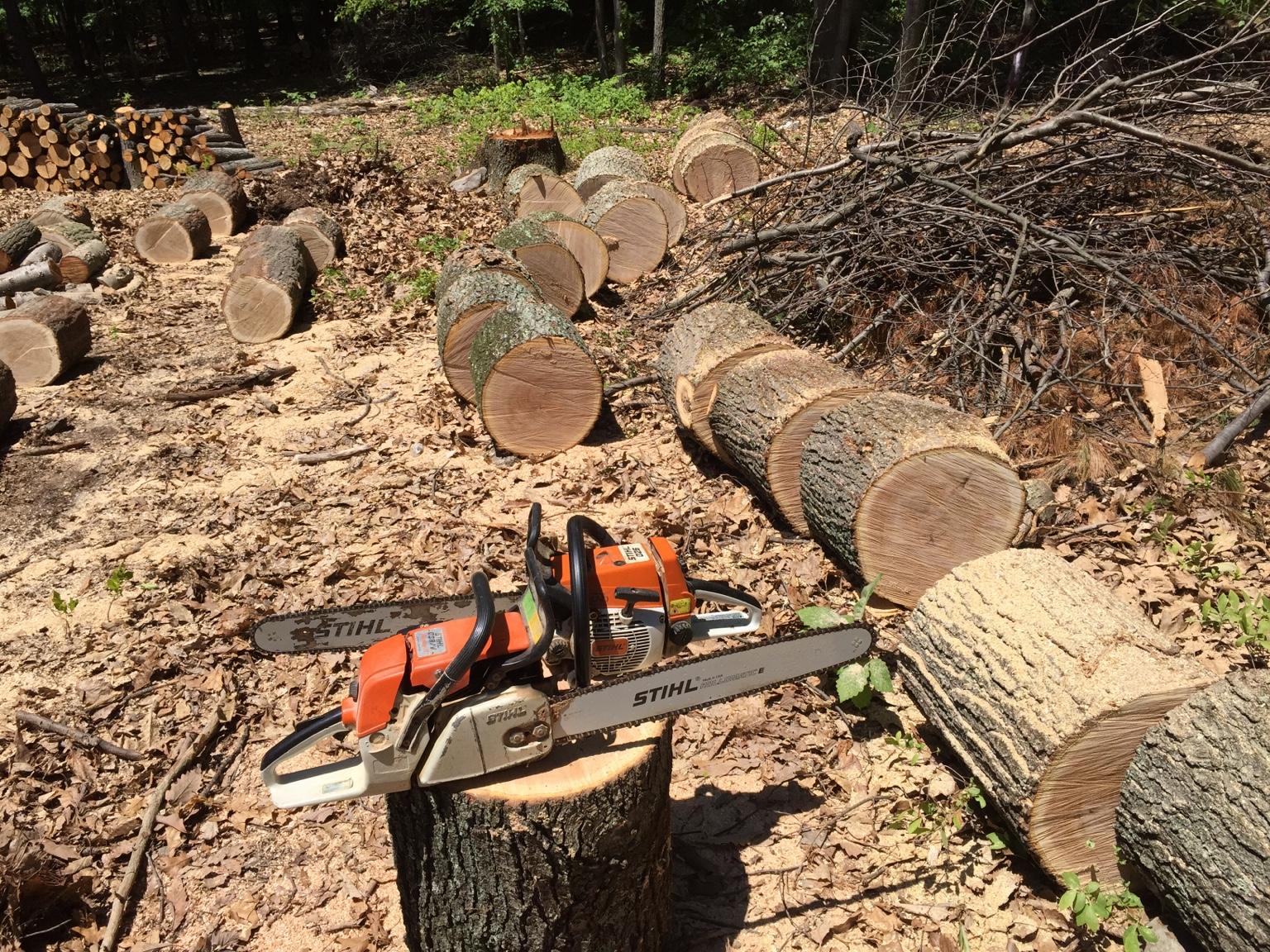 Echo husqvarna or stihl chainsaw - Comparatif tronconneuse stihl husqvarna ...