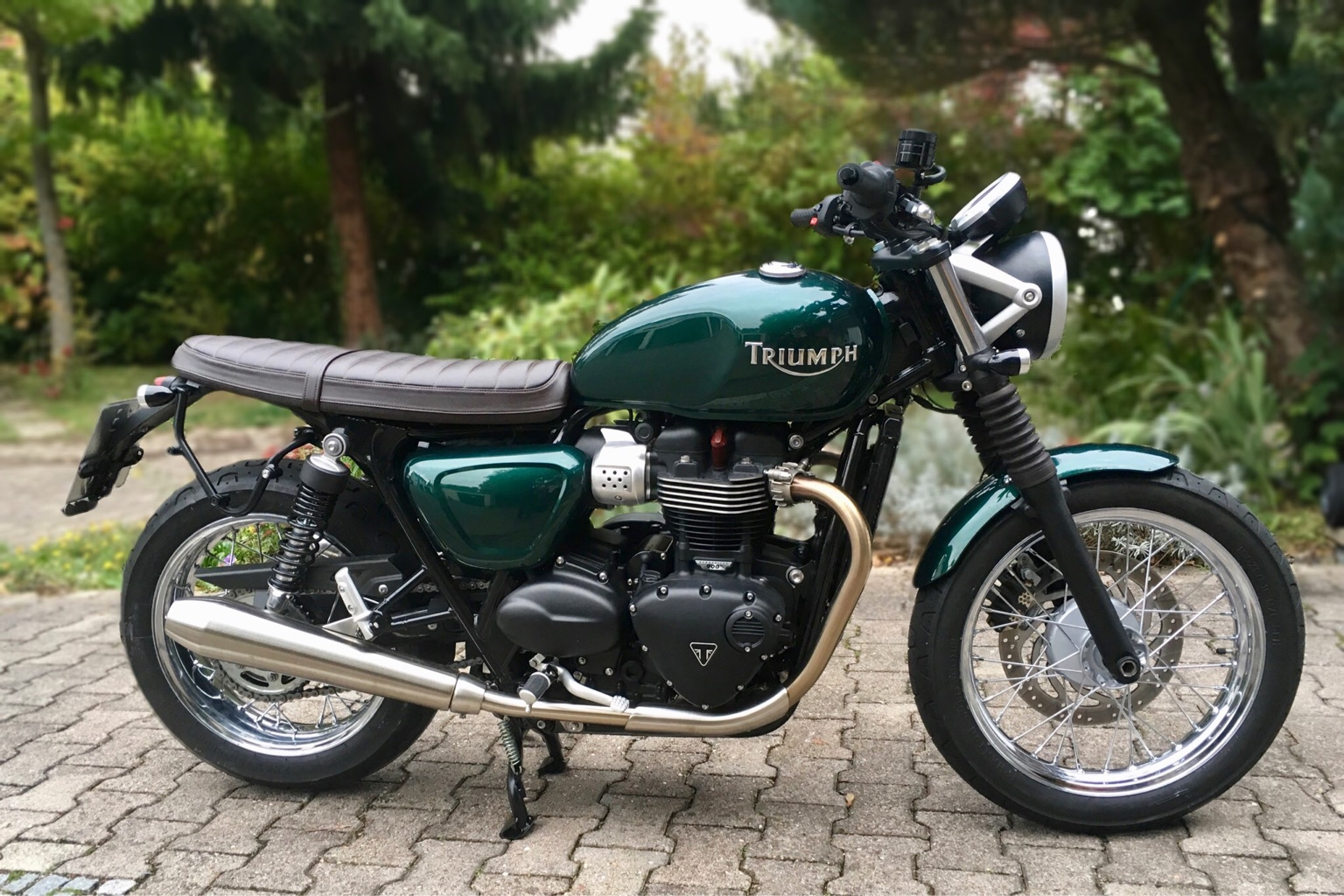 triumph forum triumph rat motorcycle forums view single post removing triumph decal on. Black Bedroom Furniture Sets. Home Design Ideas