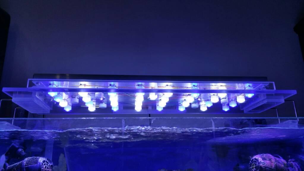 Schema elettrico per plafoniera led per acquario dolce for Plafoniera led acquario